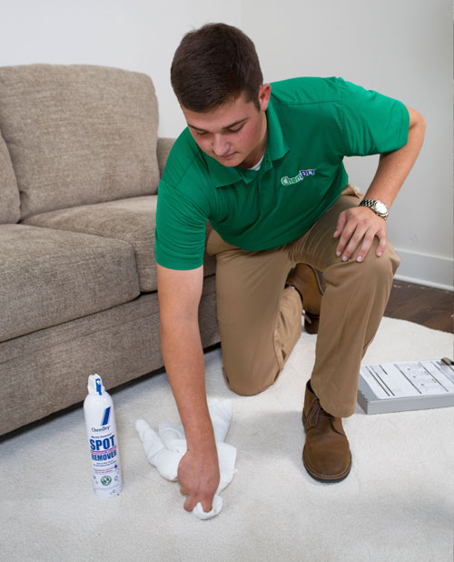 Chem-Dry of North County removes stains from ink, food, soda, or makeup from your carpets.
